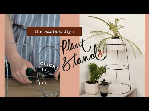 GIVE YOUR PLANTS A NEW HOME!