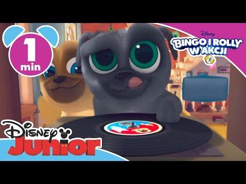 Bingo i Rolly w akcji! Piosenka tytułowa. Tylko w Disney Junior!
