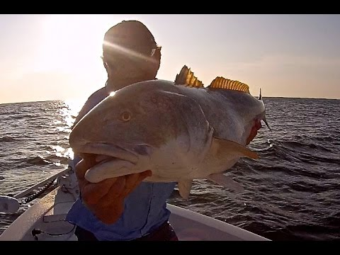 Popping Cork Redfish