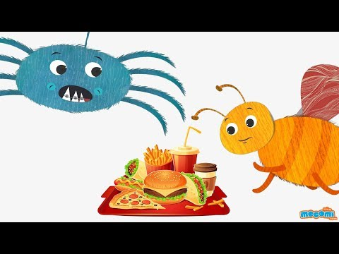 Why is junk food unhealthy? - Ask Coley - Health Tips for Kids | Educational Videos by Mocomi