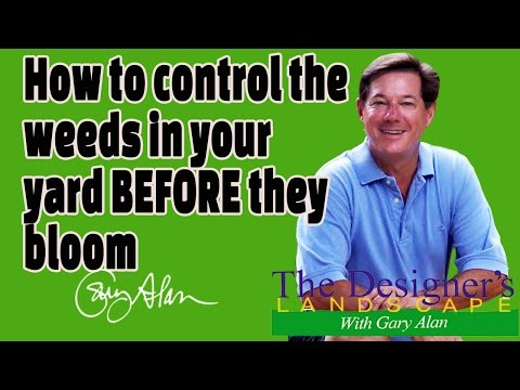 How to Control Weeds in your yard BEFORE they bloom