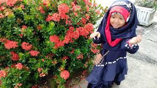Natural Toy Kids: Petak Umpet