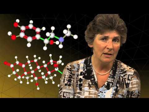 Kettingreactie #10: Zijn wij ons brein? Het antwoord van prof. dr. Marian Joëls
