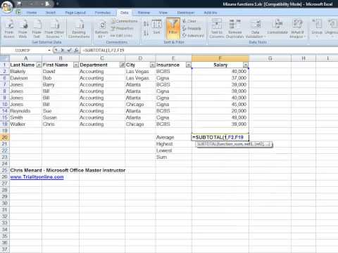 Using Excel's Subtotal Function with Filters in Excel
