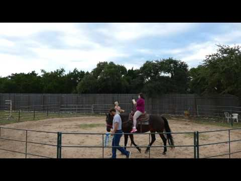 Equine Assisted Therapy Example