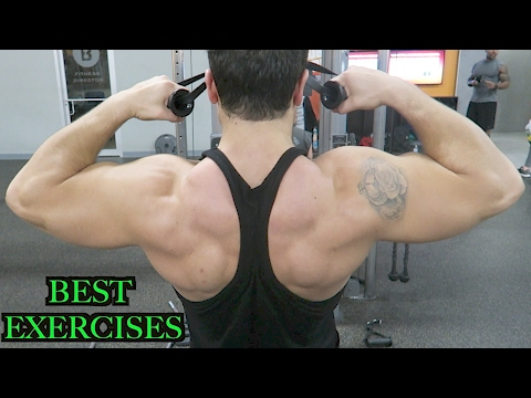 Top 3 Exercises to Build Rear Delts, Rhomboids, & Middle Traps