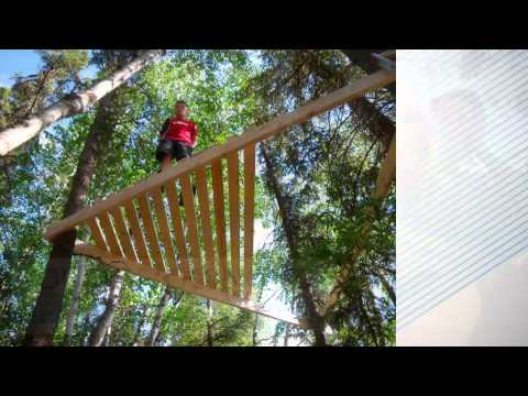 Design and  Build Your Own Tree House