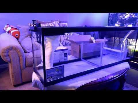 New sump build and plans for my 220 reef tank