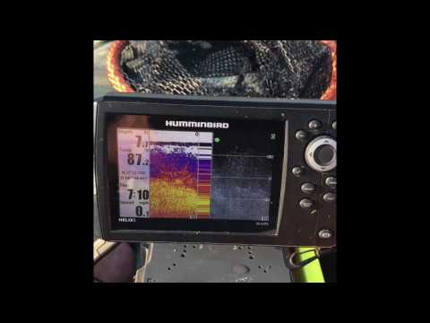 Basic Humminbird Helix 5 functions to find bass