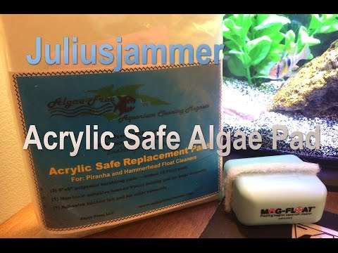 Acrylic Safe way to remove algae from your tank - NO SCRATCHES!