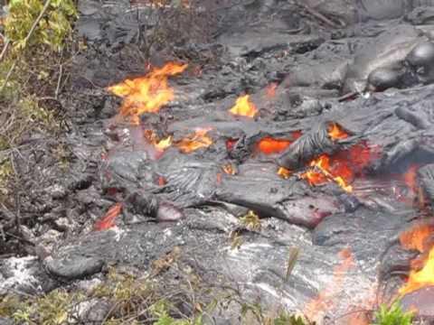 Royal Gardens Lava Flow June 15, 2009