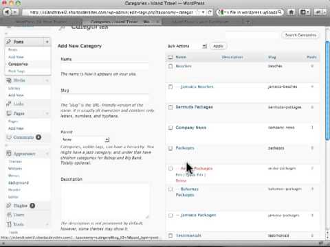 Managing Post Categories in Wordpress Posts