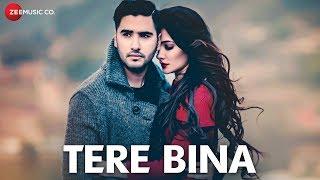 Tere Bina - Official Music Video | Amir Sheakh | Renuca Singh