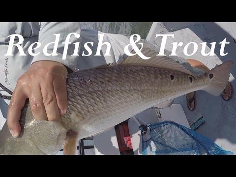 Fishing From a Tower!! Corpus Christi Redfish