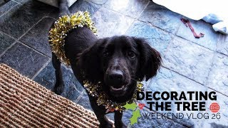 Decorating the Tree 🎄🎁   Weekend Vlog 26