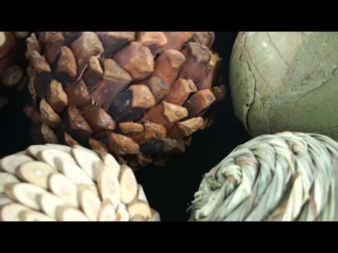 Natural Wooden Moss Twig Wicker Rattan Reed Balls Vase Wedding HomeGarden Decor 1