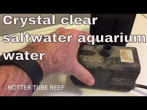 crystal clear saltwater aquarium - hydro sponge filter