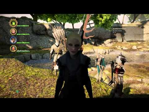Dragon Age Inquisition character graphic error
