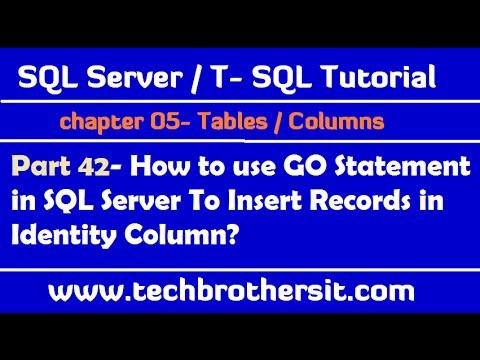 Use GO Statement in SQL Server To insert Records in Identity Column - SQL Server Tutorial Part 42