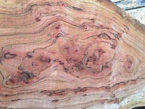 Woodmizer LT35 video. Cutting Cherry Burl/figured slabs