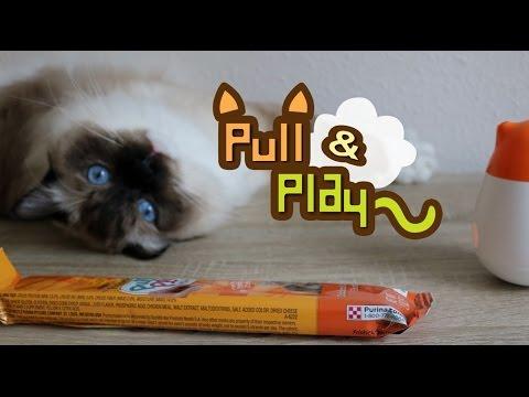 Cat Treats; Pull and Play