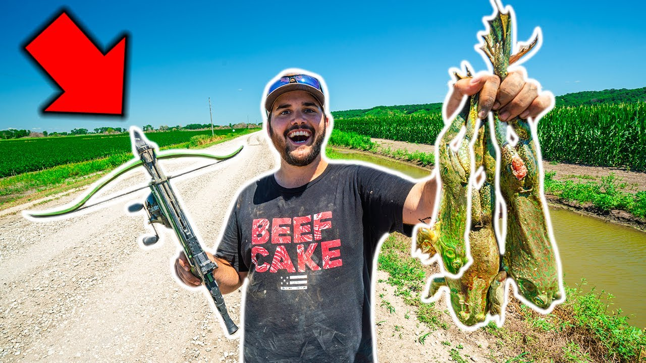 BULLFROG Hunting at My Farm with a MINI CROSSBOW!!! (Catch Clean Cook)