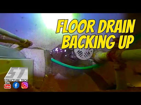 Floor drain backing up