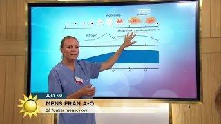 """Så funkar menscykeln: """"Då mår många kvinnor som sämst"""" - Nyhetsmorgon (TV4)"""