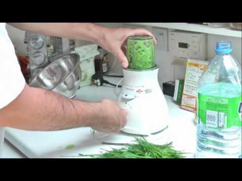 Wheatgrass juice using a blender.