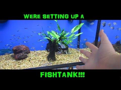 WERE SETTING UP A FISH TANK!!! (Vlog #18)