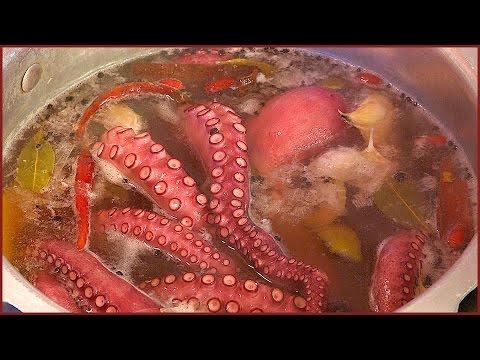 How to cook prepare Wild Spanish Octopus Squid