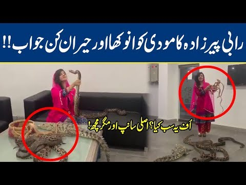 Xxx Mp4 Watch Rabi Pirzada Snake Video Goes Viral Gone Crazy Lahore News HD 3gp Sex
