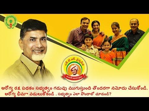 ఎన్టీఆర్ వైద్య సేవ   ఆరోగ్య రక్ష    NTR Arogya Raksha Scheme   arogya raksha   Andhra Pradesh