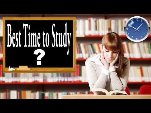 What is the Best Time to Study?