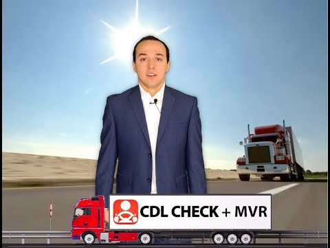 CDL Check + MVR