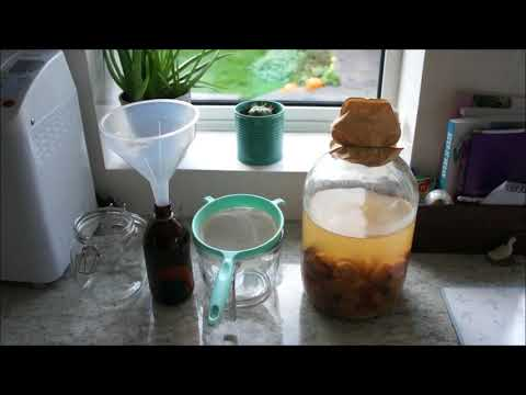 Making 1 Gallon of Organic Apple Cider Vinegar at Home Part 2