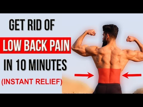 Fix LOWER BACK PAIN in 10 Mins (Top 4 Stretches)