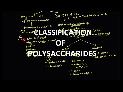 Polysaccharides - Classification