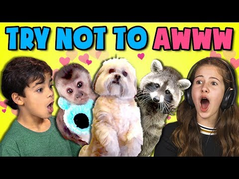 KIDS REACT TO TRY NOT TO AWW CHALLENGE #3