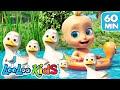 Five Little Ducks | LooLoo Kids Nursery Rhymes and Children`s Songs