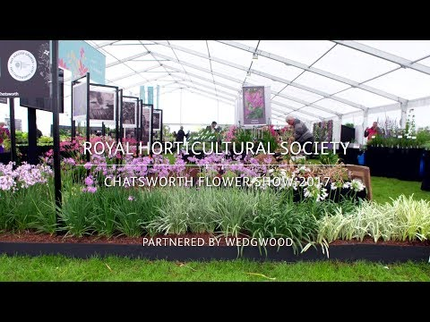 RHS Chatsworth Flower Show 2017 | Hoyland Plant Centre | Good plants for a changing climate
