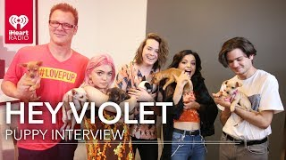 Hey Violet Puppy Interview! | #LovePup with Johnjay