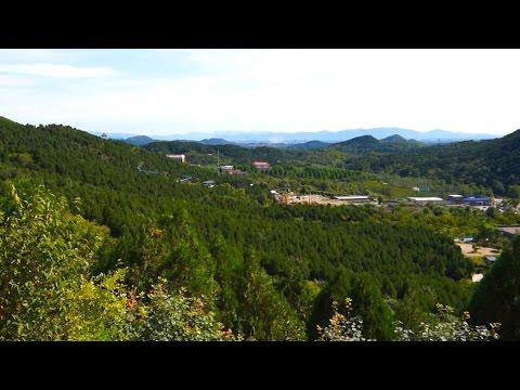 China: Reducing Carbon Footprints