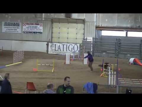 SCAC HawkFriExcStd 20121123