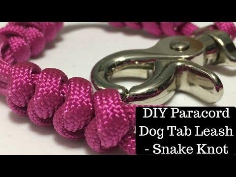 DIY Paracord Dog Tab Leash Snake Knot