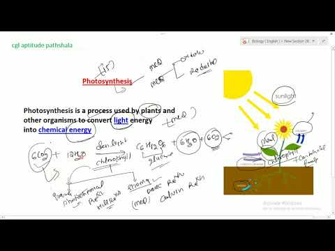Photosynthesis # BIOLOGY FULL LECTURE