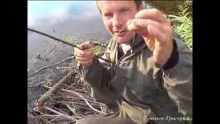 Примитивная рыболовная удочка из крапивы и газовой зажигалки.