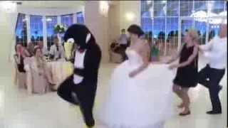 Penguin dance fever hits Saudi Arabia رقصة البطريق تنتشر السعودية