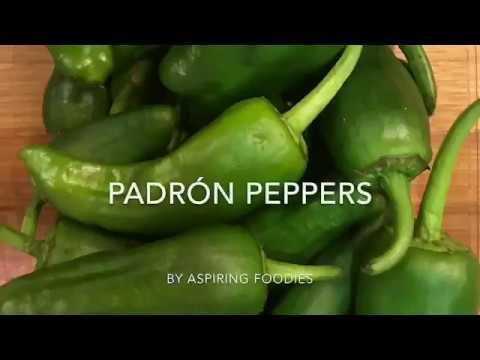 PADRON PEPPERS/Pimientos de Padrón