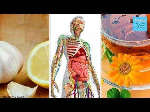 6 Natural Remedies to Detoxify the Lymphatic System - Canada 365